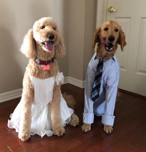 Libby & Sampson